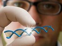 ДНК-1